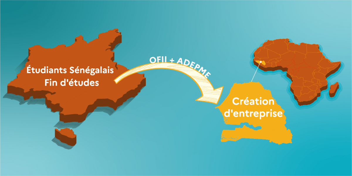 image mis en avant de Information for Senegalese students who wish to return to Senegal